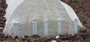 Plant Fleece, Horticultural Frost Protection, Fleece for Garden Plants, 35gsm