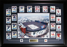 2014 Winter Classic Toronto Maple Leafs Detroit Red Wings Cards Set NHL Frame