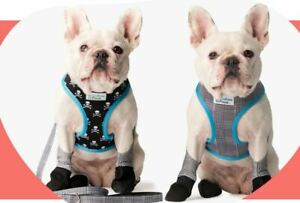 Walkee Paws Reversible Classic/Skulls 2-in-1 Dog Harness Size L