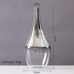 Nordic Creative Flower Glass Vase Art Narrow neck Silver Gradent Plant Holder