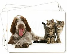 Italian Spinone Dog and Kittens Picture Placemats in Gift Box, AD-SP1P