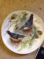 Ursula Band WWF Corsican Nuthatch 22 CT Gold Rim