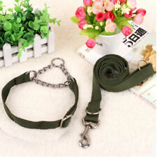 Nylon Pet Dog Collar Leash Set Adjustable Leash Running Collars Dog Pet Products
