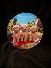 Franklin Mint Royal Doulton Don Scarlett Good As Gold Plate Yellow Labrador