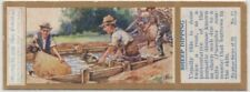 Sheep Dipping To Control Scab Psoroptes communis Agriculture 1930sTrade Ad Card