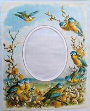 Set of 4 Vintage Pictorial Photograph Mounts Beryl Peters British Birds Flowers