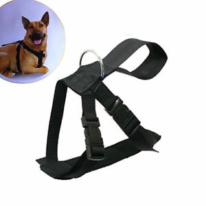 DOG SAFETY HARNESS RESTRAINT WALKING ADJUSTABLE PADDED SEAT BELT LEAD LEASH CLIP