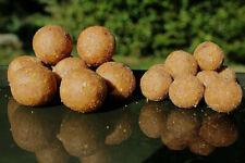Boilies Erdnussboilies Milky-Peanut Nussboilies Selection-Fishing 1kg 16mm 20mm