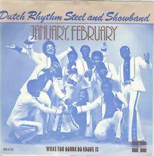 DUTCH RHYTHM STEEL & SHOW BAND - JANUARY FEBRUARY ( NEGRAM  NG 2175)  1976