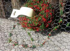 1m Zederngirlande Zeder rote Beeren Herbst Tannengirlande biegsam wie Buchsbaum