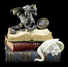 Drachen Schmuckbox - Wächter der Worte - Figur Veronese Fantasy Schatulle