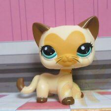 Littlest Pet Shop LPS COLLEZIONE GIOCATTOLI #3573 capelli corti CUORE VISO BARBA CAT L70