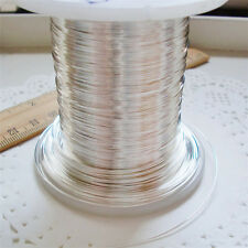 1Ft 99.999% 5N Solid Core Pure Silver Audio Wire DIY 0.2mm