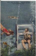 Air Station Underwater Breathing Wakulla Springs TALLAHASSEE FL Vintage Postcard