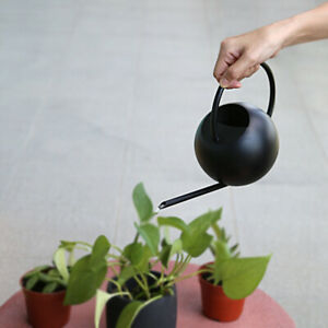 Long Spout Watering Can for Succulents Bonsai Catus Plants Bonsai Herbs