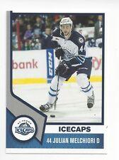 Julian Melchiori 2013-14 St. John's IceCaps (Springfield Thunderbirds)