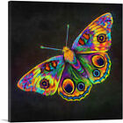 ARTCANVAS Butterfly Wings Insect Canvas Art Print