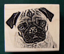 "P7 Pug dog rubber stamp 2.2x1.6"" WM"