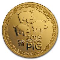 2019 Niue 1 oz Gold $250 Lunar Pig BU - SKU#176568