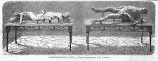 POMPEI CADAVRES GRAVURE ILLUSTRATION 1863