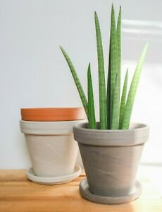 Pack of 2 Terra Cotta Planters 6 inch - Clay, White, Gray, Red House Plant Pot