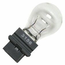 US Glühbirne Glühlampe Typ 906 Glassockel T5 9,3W 12V Autolampe Licht KFZLeuchte