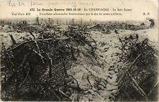 CPA MILITAIRE En Champagne-Le bois Sabot, tranchées allemandes (316676)