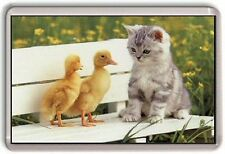 Ducks and Cat Fridge Magnet 01