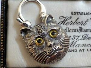 Antique Scottish Silver Agate Cat Padlock Locket for bracelet Malachite