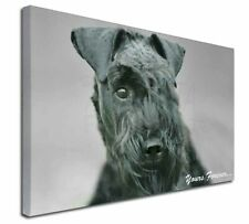 "Kerry Blue Terrier 'Yours Forever' 30""x20"" Wall Art Canvas, Extra, AD-KB1y-C3020"
