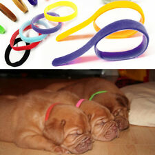 UK New 12 Different Colours Dog Puppy Kitten Newborn Welping ID Bands Collar Set