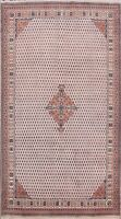 Traditional Hand-knotted Paisley Botemir Oriental Area Rug Wool Carpet 6x10 ft