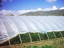5Year Agfabric Greenhouse Plastic Film Covering UV Protected film 0.8mile 6x8FT