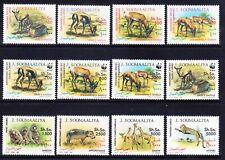 More details for somalia 1992 wildlife set of 12 michel 432/43 - superb unmounted mint cv95 euros