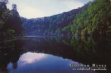 LARGE size GORDON RIVER - NO ARTIFICIAL INGREDIENTS TAS POSTCARD Nu-Color-Vue PC