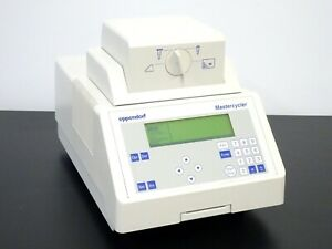 Eppendorf Mastercycler 5333 Thermal Cycler PCR