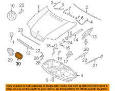 BMW OEM 2001 325i-Grille Grill Left 51138208487