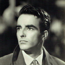 Foto Cartolina Originale Montgomery Clift