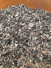 100 Shark Teeth Lot, Plus 50 Sting Ray Mouth Plates
