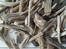 Driftwood Northumberland 100+ Small Pieces Display Crafts wreaths etc ukjoh