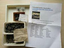 Lot Lautenthal, Harz Cuprit Beudantit etc. SCHÖN Mineralien Sammlung