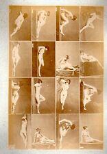 C25 Calavas photo étude pour peintre vintage albumen print albuminé nus Femme