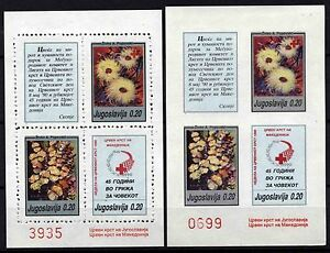 508 Yugoslavia - Macedonia 1990 Red Cross, Perf. + Imperf.  Booklet (2) MNH
