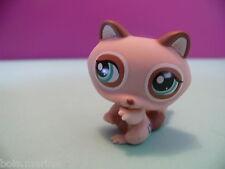 petshop raton laveur / raccoon N° 1409