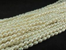 Cream White Freshwater Pearl 4.5-5mm Oval Teardrop Shaped Bead Strands B