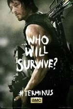 TELEVISION POSTER The Walking Dead Terminus Daryl
