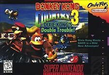 Donkey Kong Country 3: Dixie Kong's Double Trouble (Super Nintendo Entertainment System, 1996)