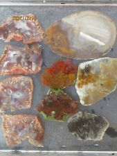 Black RED & Yellow Plume Agate lot of 9 slabs