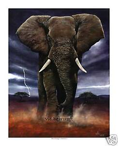 'Rolling Thunder' Limited Edition Print, Elephant print