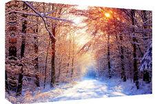 Snow Winter Landscape Scene  Canvas Wall Art Picture  - All sizes & colours
